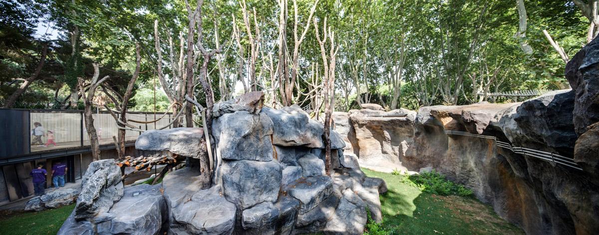 Zoo Barcelona zoo barcelona